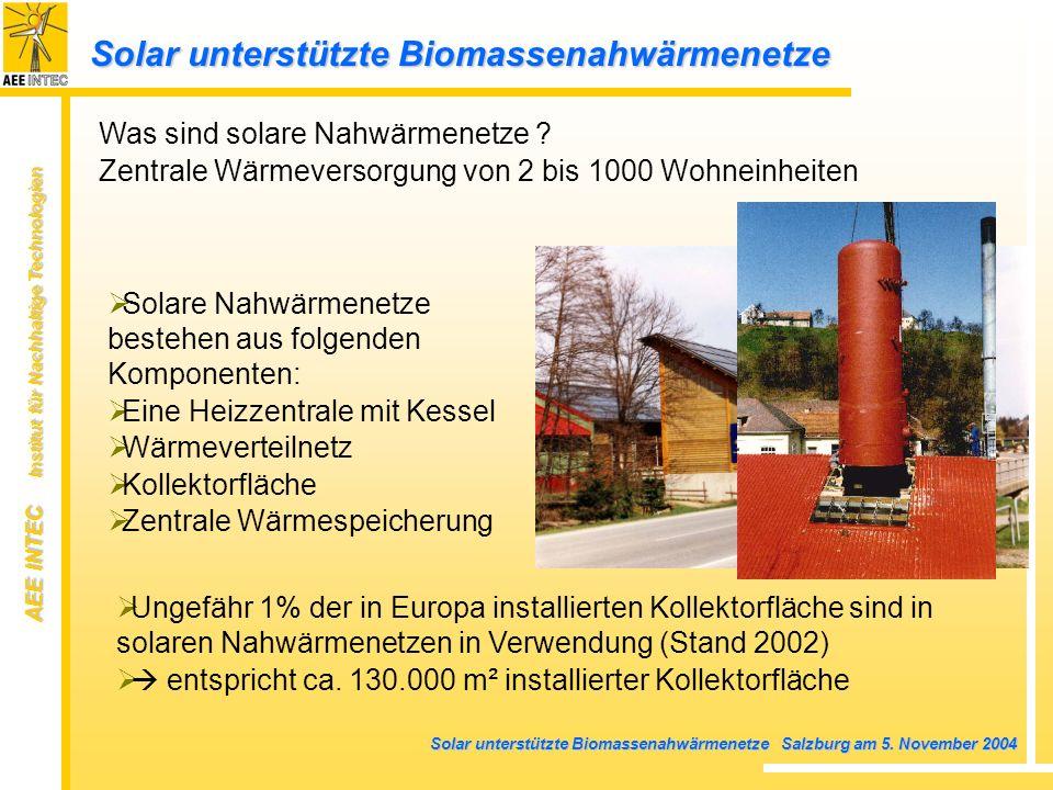 Solar unterstützte Biomassenahwärmenetze