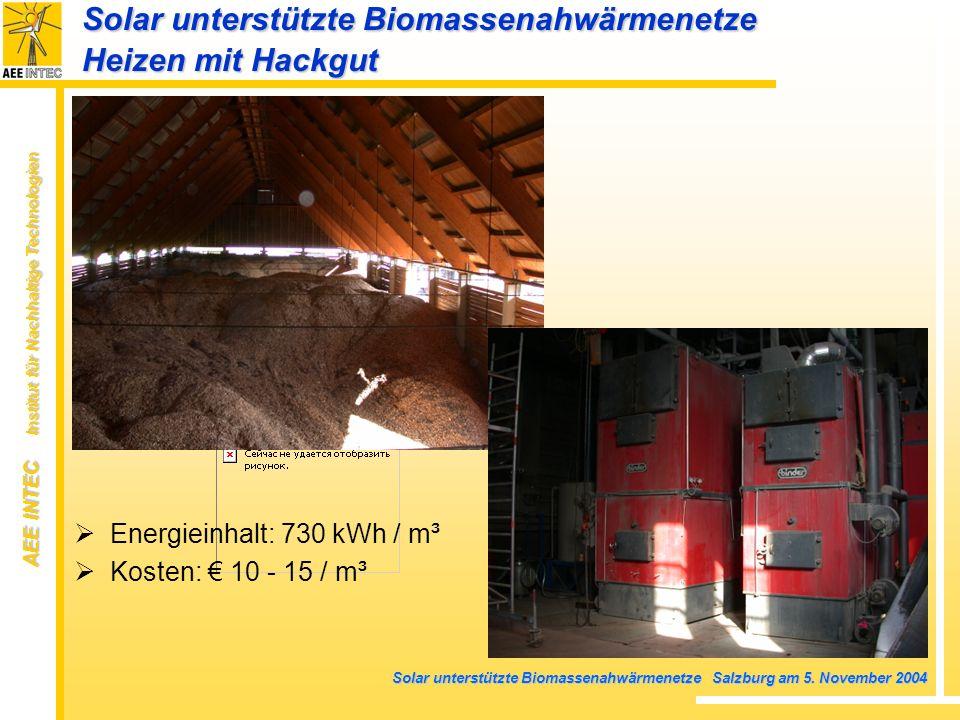 Solar unterstützte Biomassenahwärmenetze Heizen mit Hackgut
