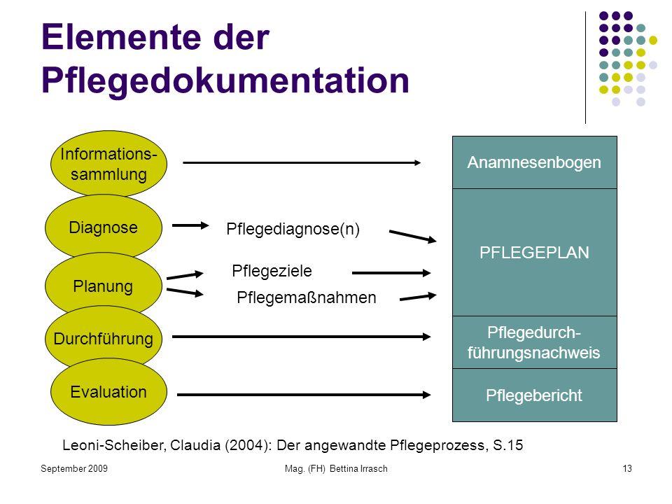 Elemente der Pflegedokumentation