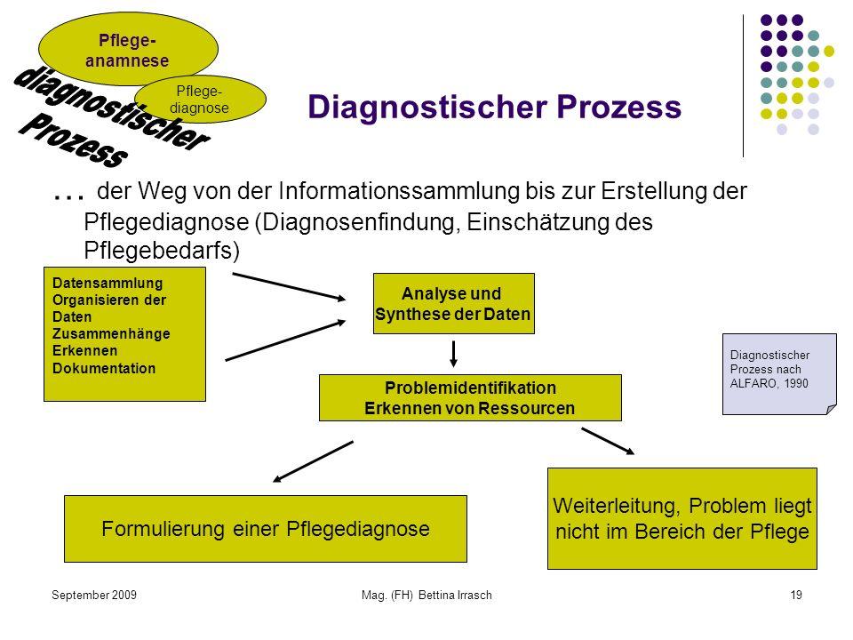 Diagnostischer Prozess