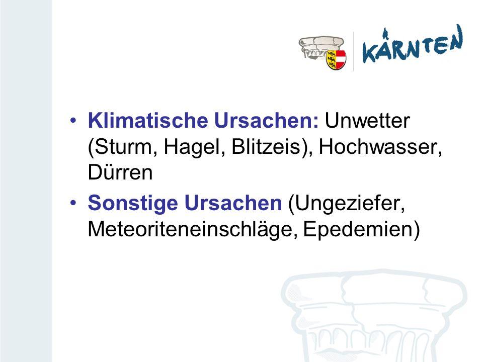 Klimatische Ursachen: Unwetter (Sturm, Hagel, Blitzeis), Hochwasser, Dürren