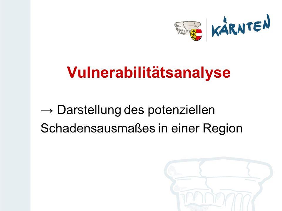 Vulnerabilitätsanalyse