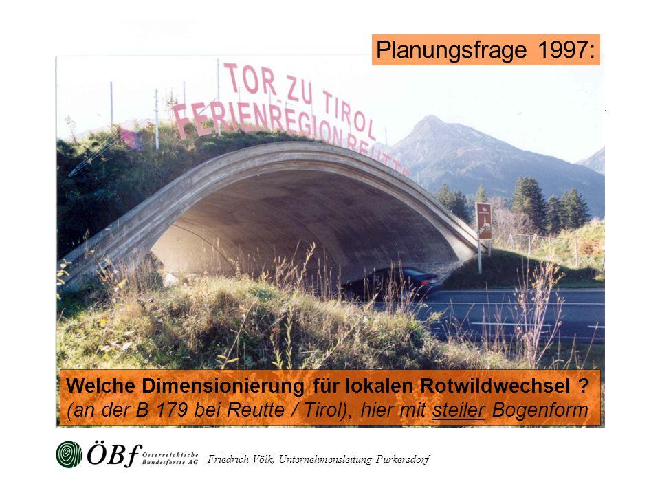 Planungsfrage 1997: Welche Dimensionierung für lokalen Rotwildwechsel (an der B 179 bei Reutte / Tirol), hier mit steiler Bogenform.