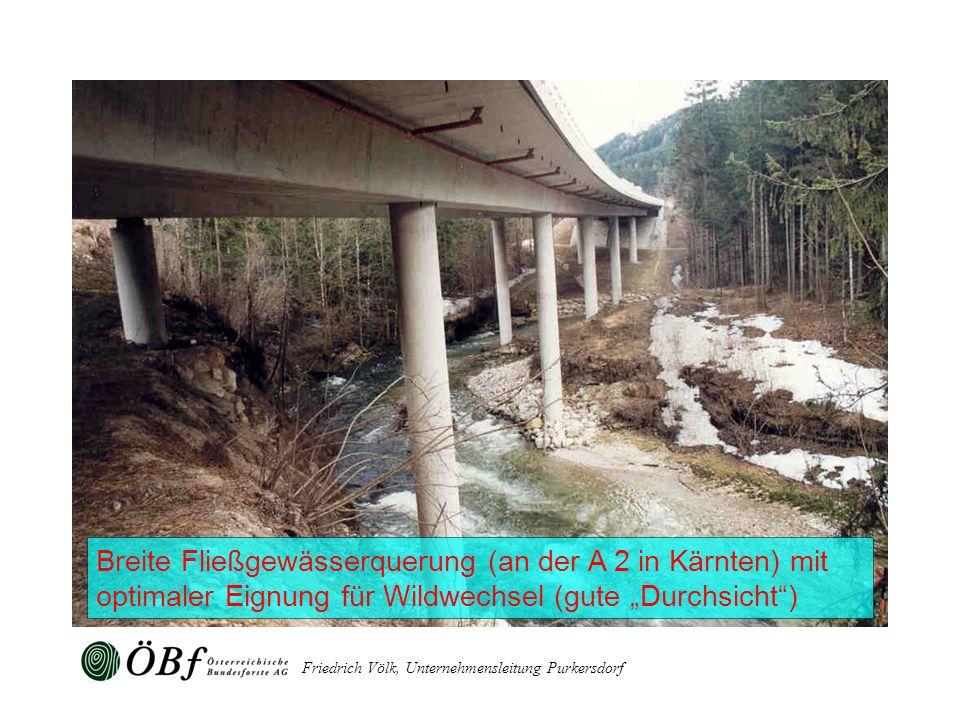 """Breite Fließgewässerquerung (an der A 2 in Kärnten) mit optimaler Eignung für Wildwechsel (gute """"Durchsicht )"""