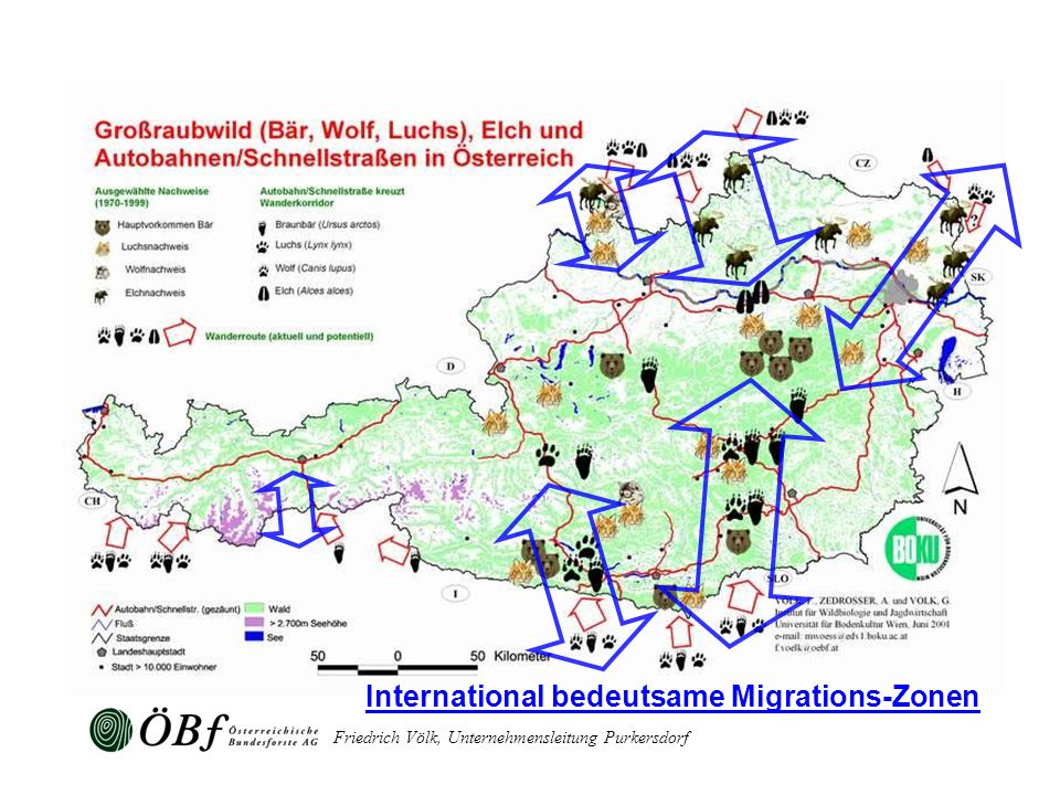 International bedeutsame Migrations-Zonen