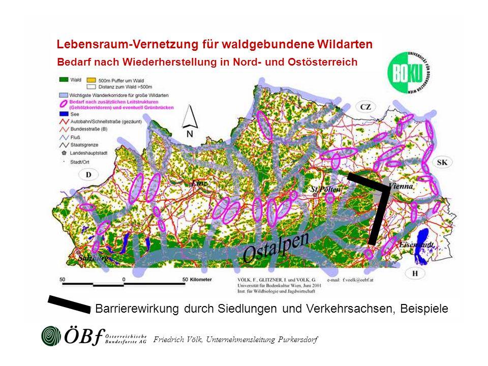 Lebensraum-Vernetzung für waldgebundene Wildarten