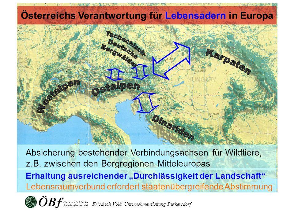 Österreichs Verantwortung für Lebensadern in Europa