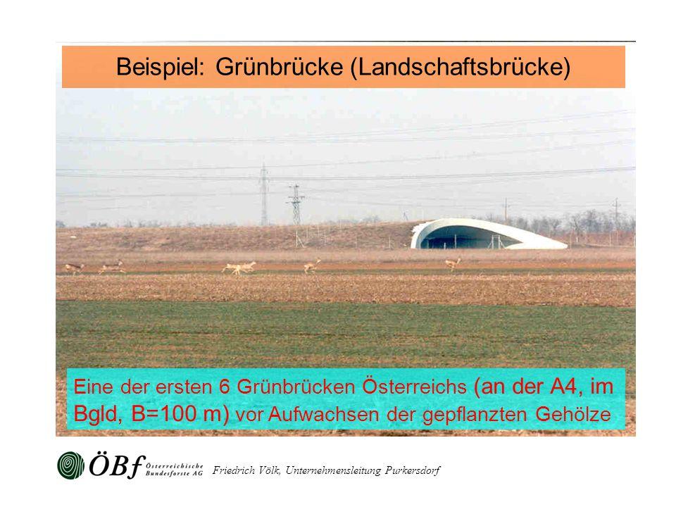 Beispiel: Grünbrücke (Landschaftsbrücke)