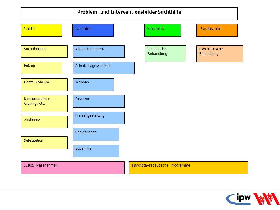 Problem- und Interventionsfelder Suchthilfe