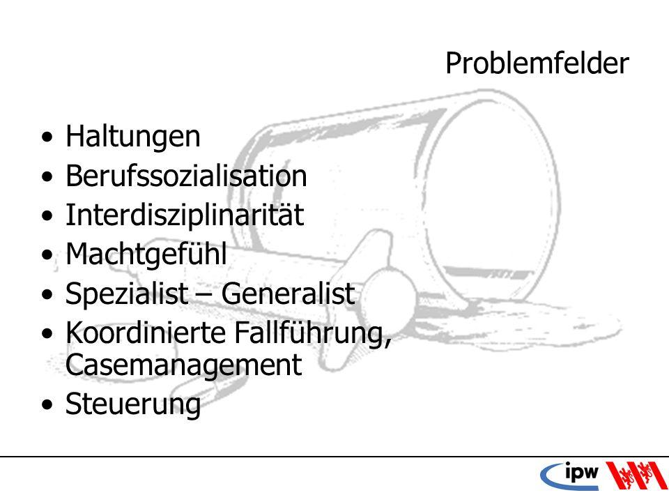 Problemfelder Haltungen. Berufssozialisation. Interdisziplinarität. Machtgefühl. Spezialist – Generalist.