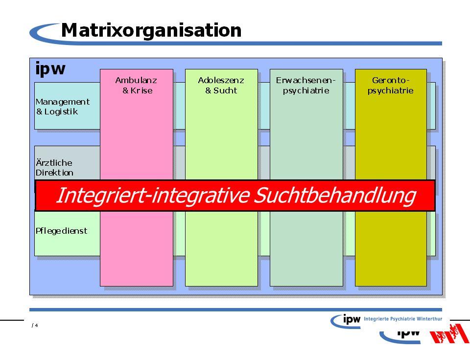 Integriert-integrative Suchtbehandlung