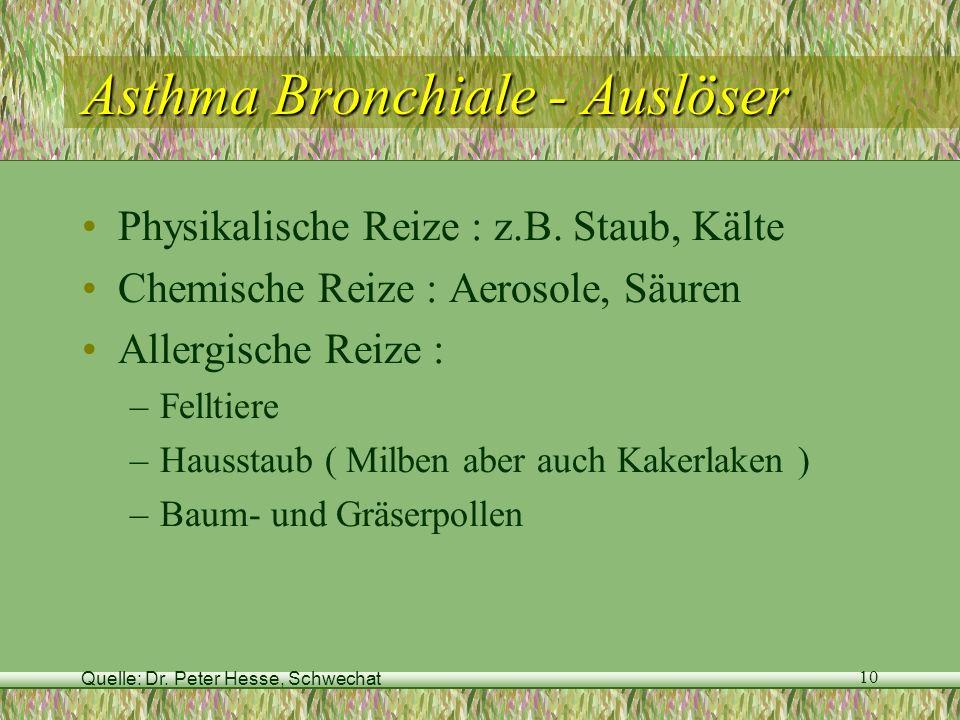 Asthma Bronchiale - Auslöser