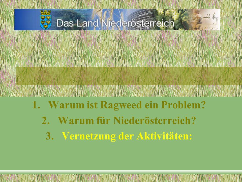 Warum ist Ragweed ein Problem Warum für Niederösterreich