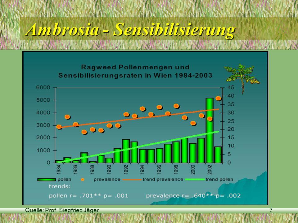 Ambrosia - Sensibilisierung