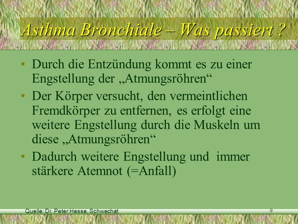 Asthma Bronchiale – Was passiert