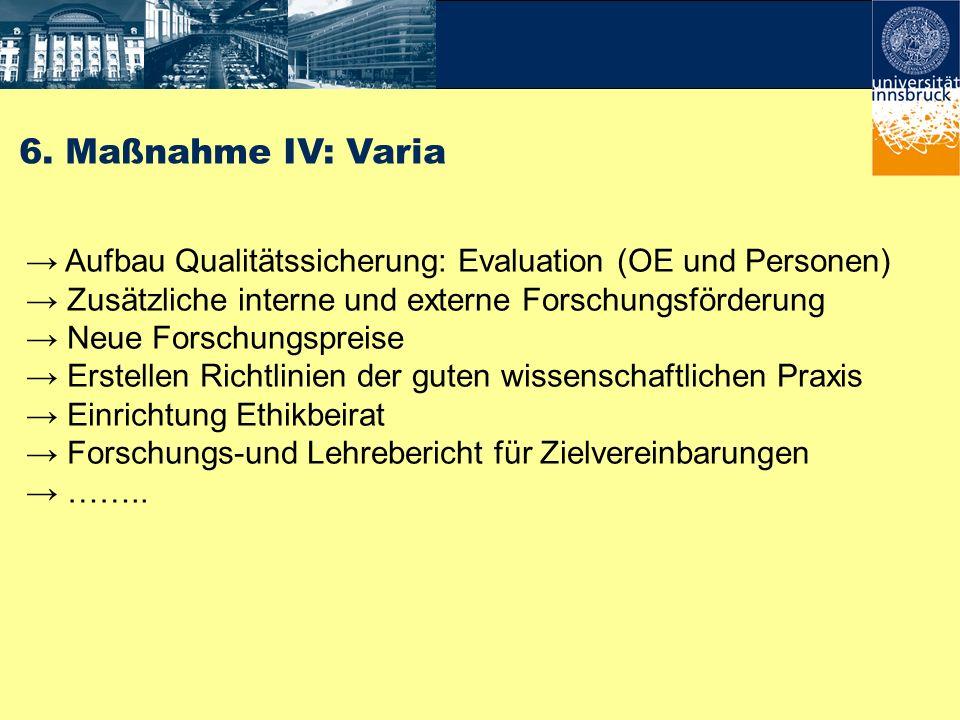 6. Maßnahme IV: Varia→ Aufbau Qualitätssicherung: Evaluation (OE und Personen) → Zusätzliche interne und externe Forschungsförderung.