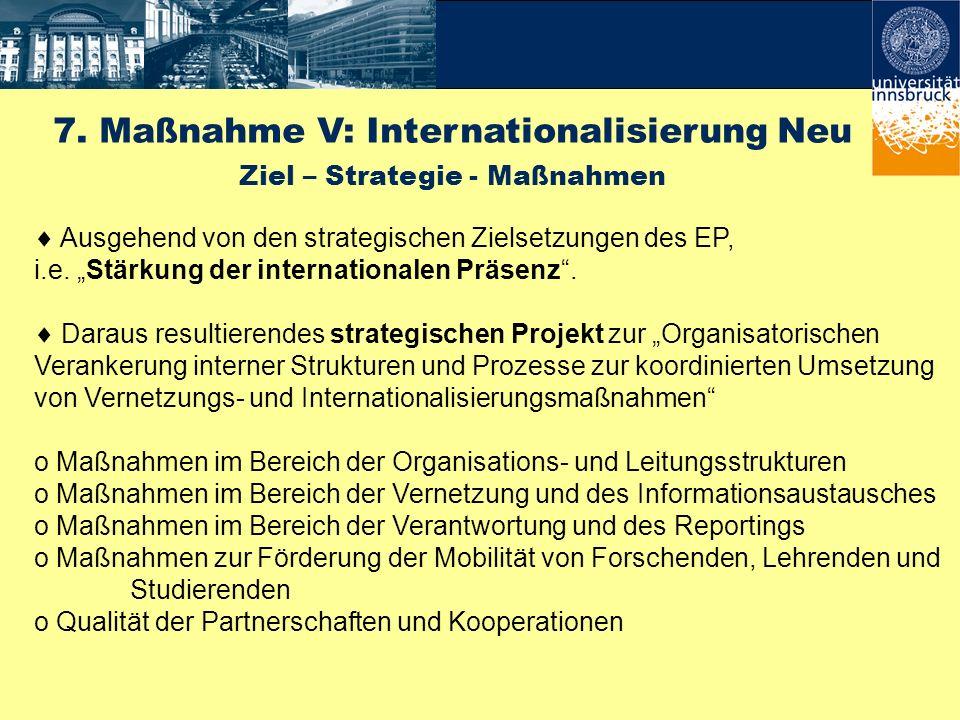 7. Maßnahme V: Internationalisierung Neu