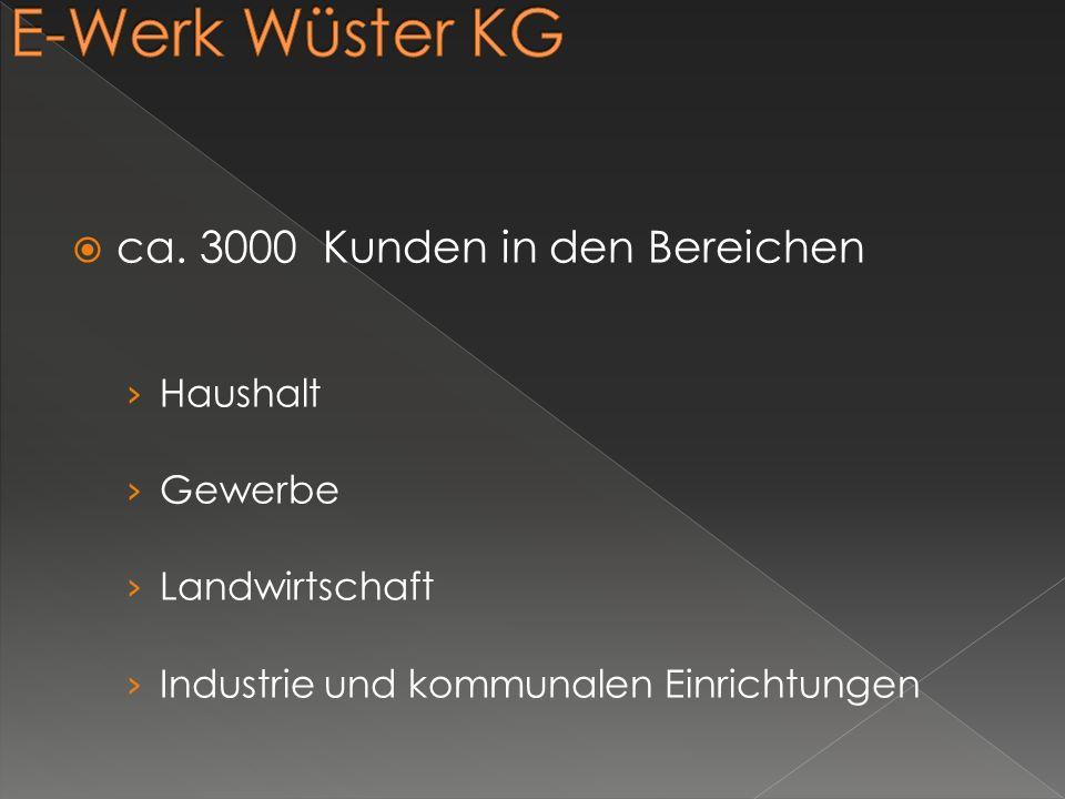 E-Werk Wüster KG ca. 3000 Kunden in den Bereichen Haushalt Gewerbe