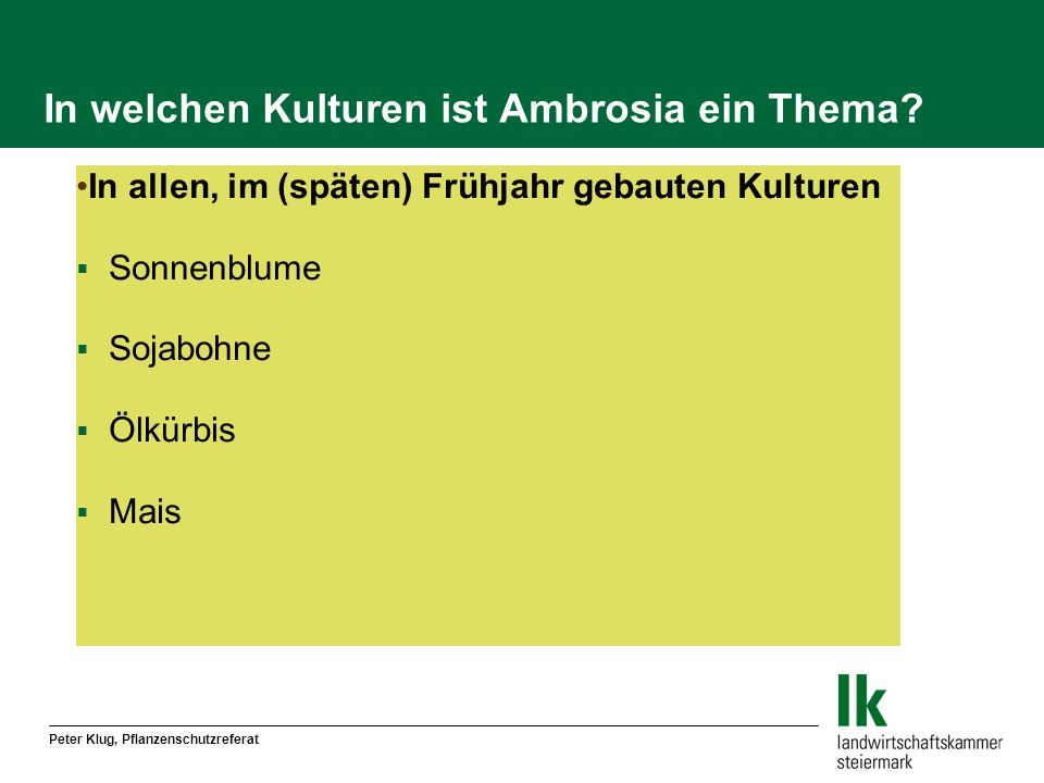 In welchen Kulturen ist Ambrosia ein Thema