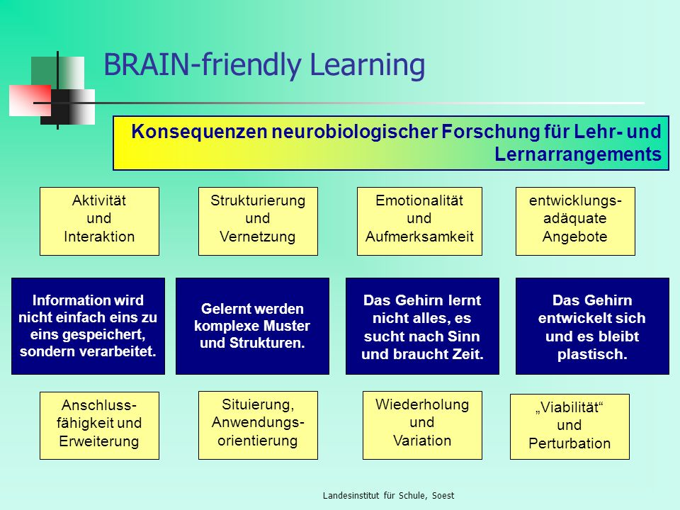 BRAIN-friendly Learning