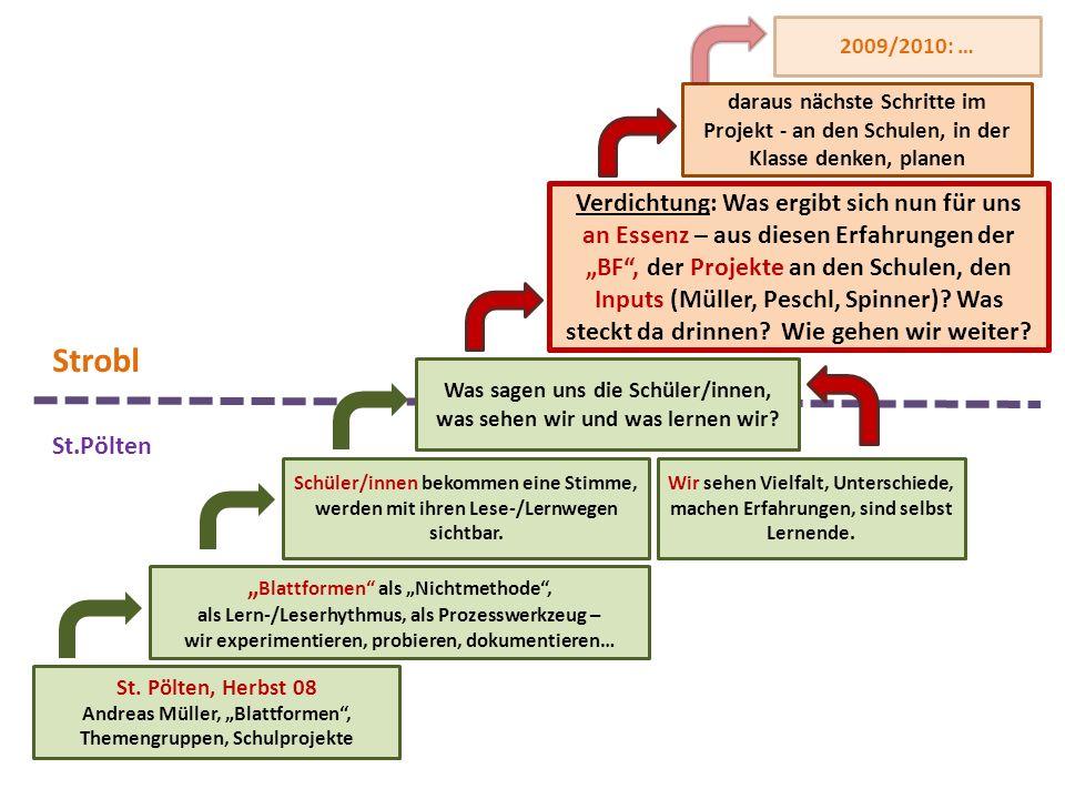 2009/2010: … daraus nächste Schritte im Projekt - an den Schulen, in der Klasse denken, planen.