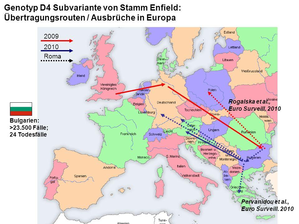Genotyp D4 Subvariante von Stamm Enfield: