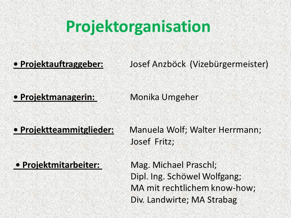 Projektorganisation • Projektauftraggeber: Josef Anzböck (Vizebürgermeister) • Projektmanagerin: Monika Umgeher • Projektteammitglieder: Manuela Wolf; Walter Herrmann; Josef Fritz; • Projektmitarbeiter: Mag.
