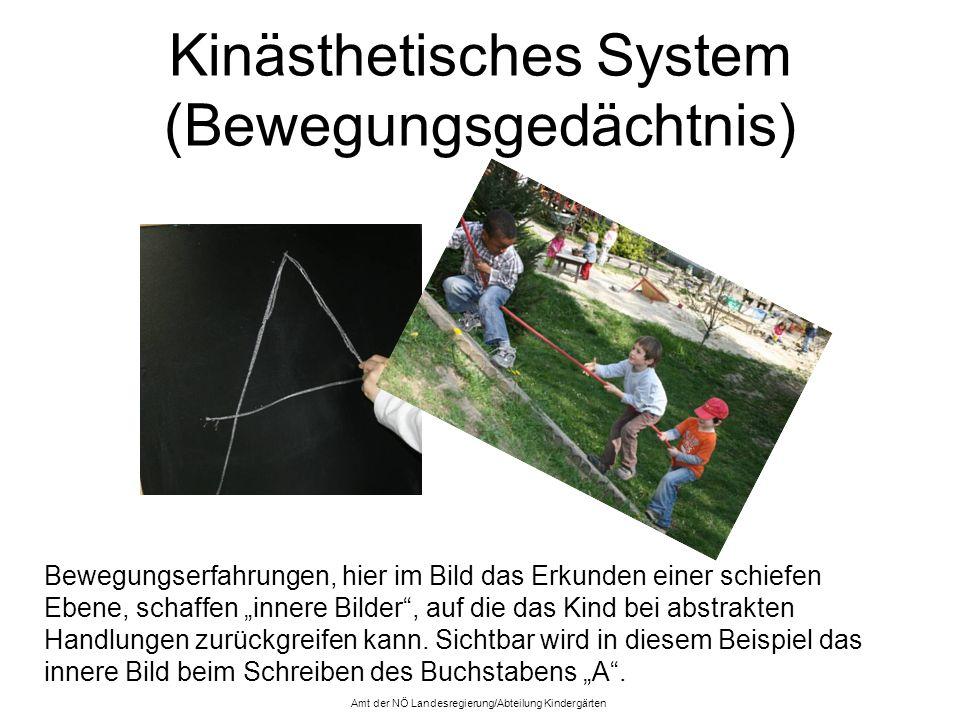 Kinästhetisches System (Bewegungsgedächtnis)