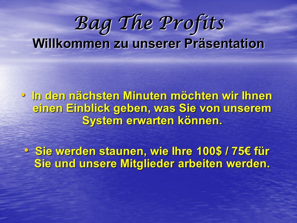 Bag The Profits Willkommen zu unserer Präsentation