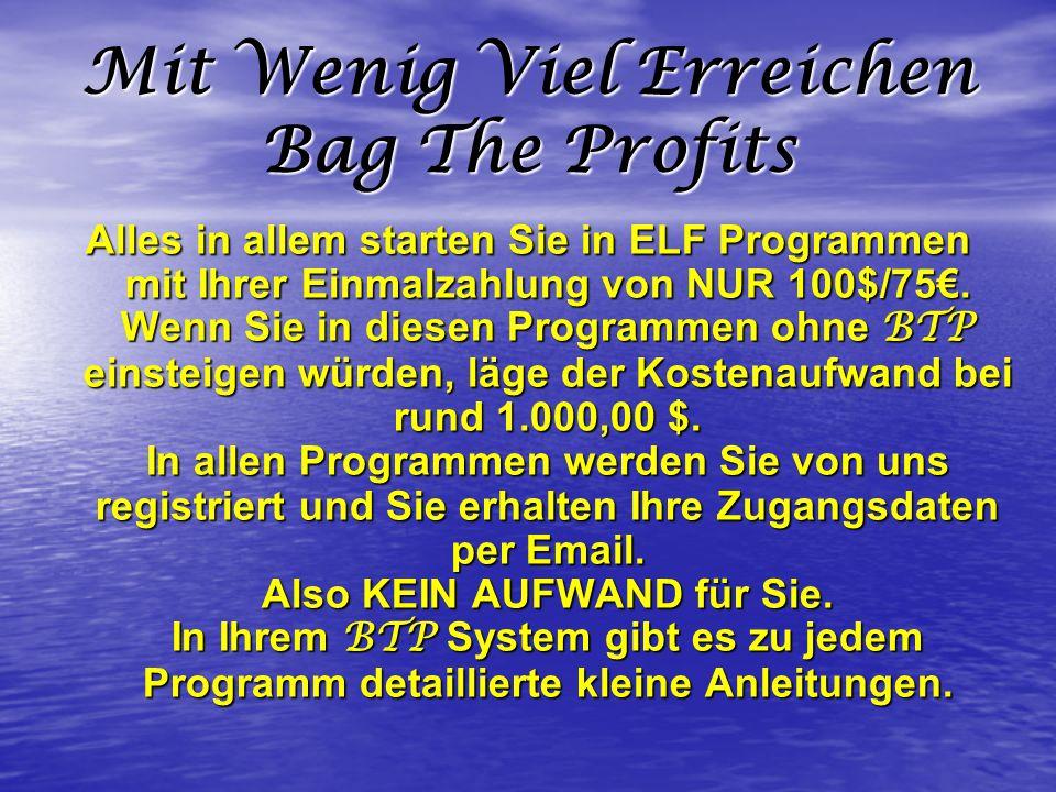 Mit Wenig Viel Erreichen Bag The Profits