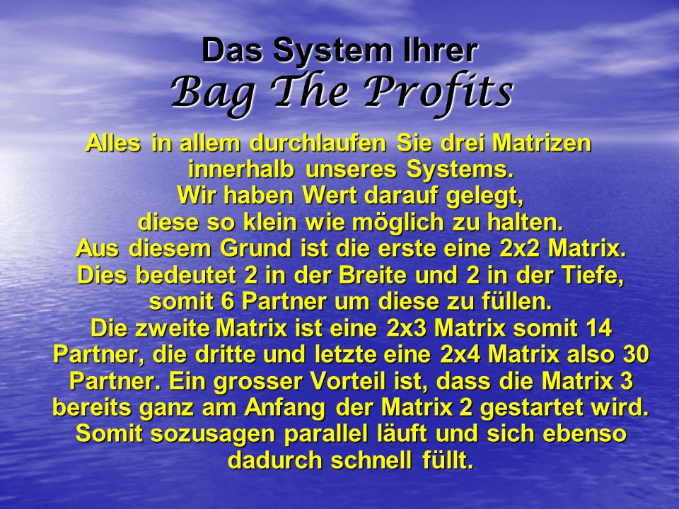 Das System Ihrer Bag The Profits