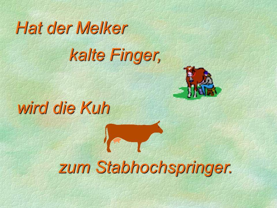 Hat der Melker kalte Finger, wird die Kuh zum Stabhochspringer.