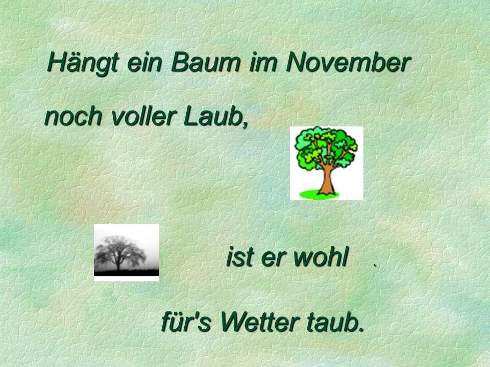 Hängt ein Baum im November