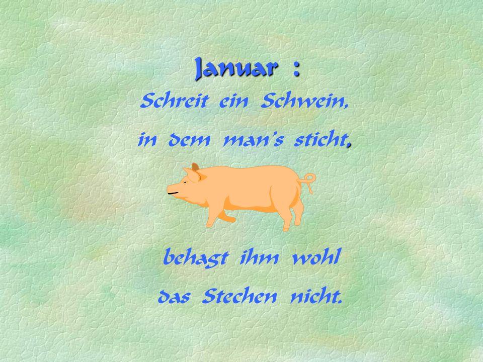 Januar : Schreit ein Schwein, in dem man s sticht, behagt ihm wohl