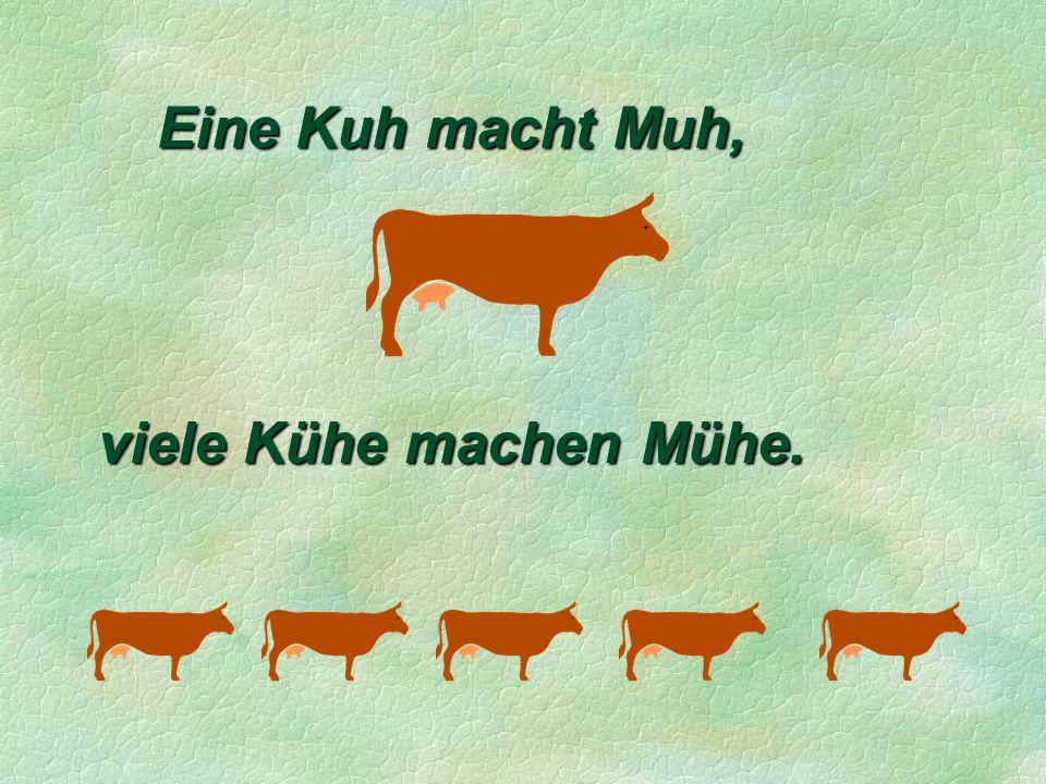 Eine Kuh macht Muh, viele Kühe machen Mühe.