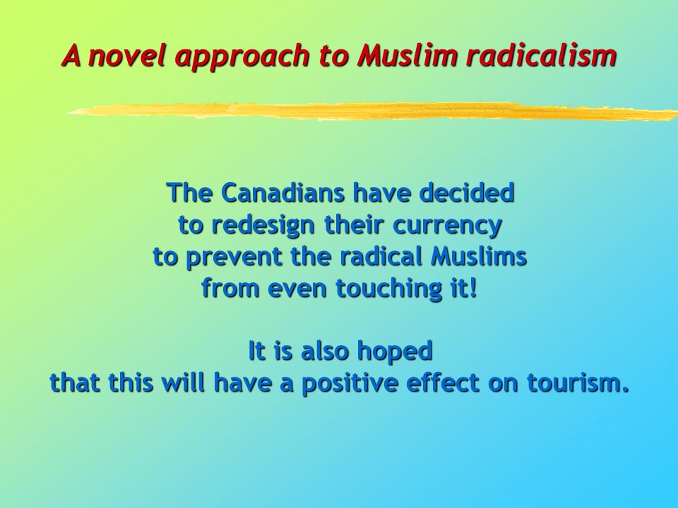 A novel approach to Muslim radicalism