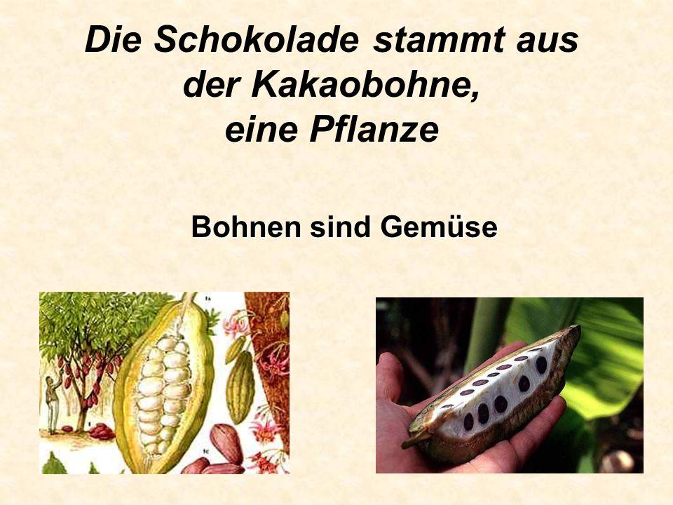 Die Schokolade stammt aus der Kakaobohne, eine Pflanze