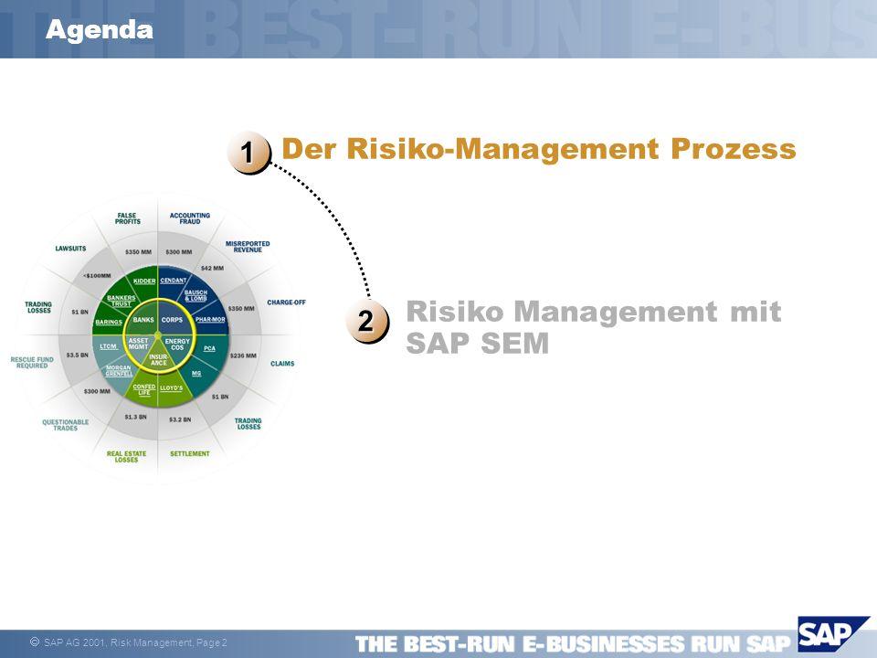 Der Risiko-Management Prozess 1