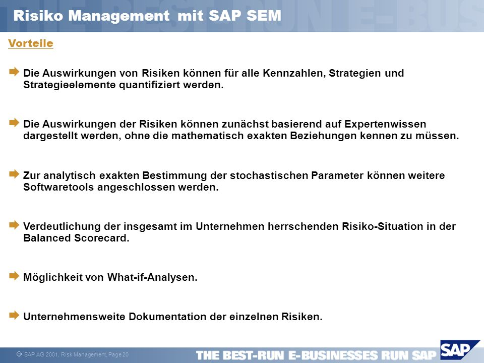 Risiko Management mit SAP SEM