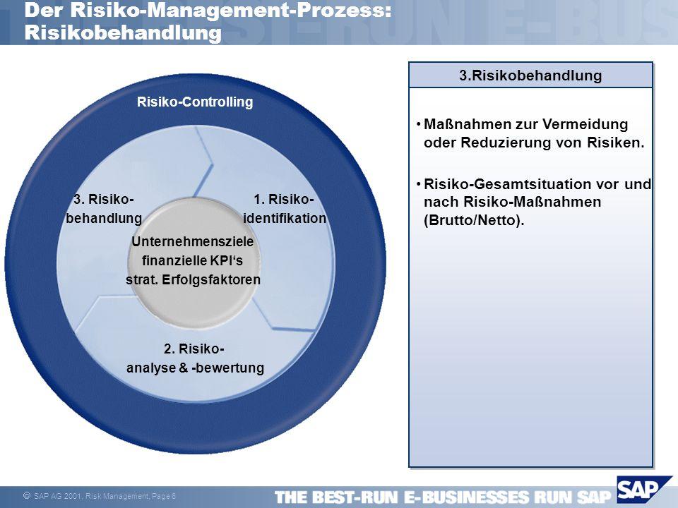 Der Risiko-Management-Prozess: Risikobehandlung