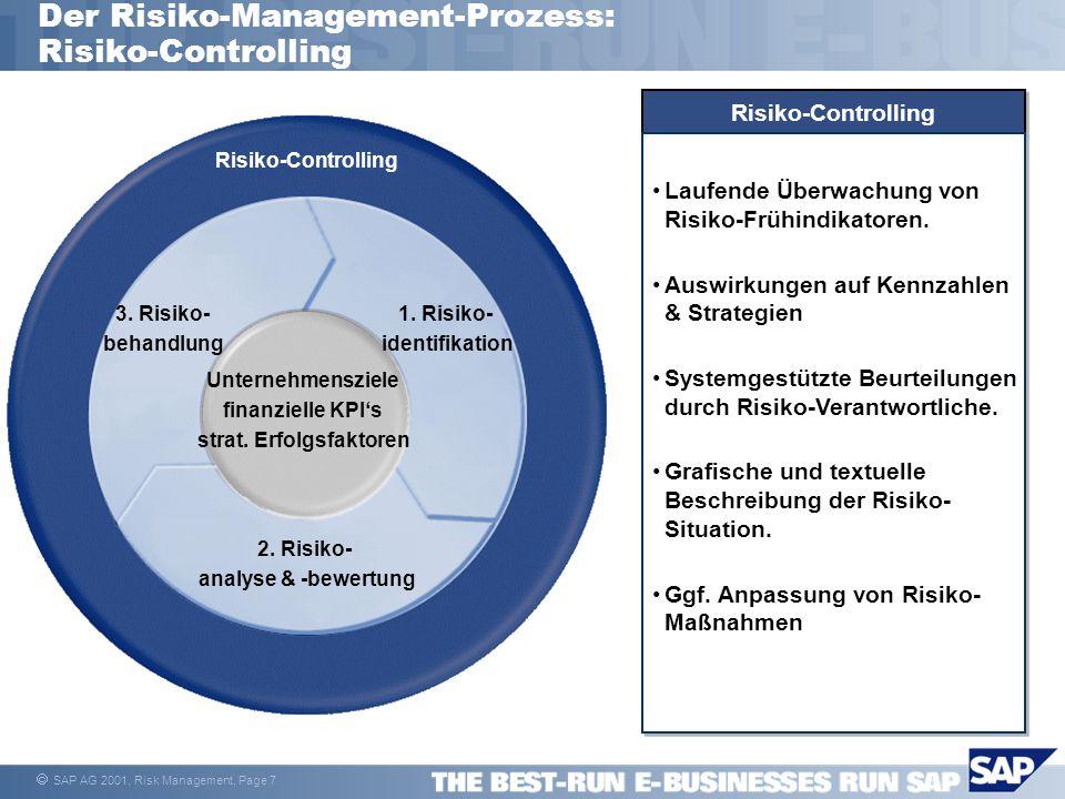 Der Risiko-Management-Prozess: Risiko-Controlling