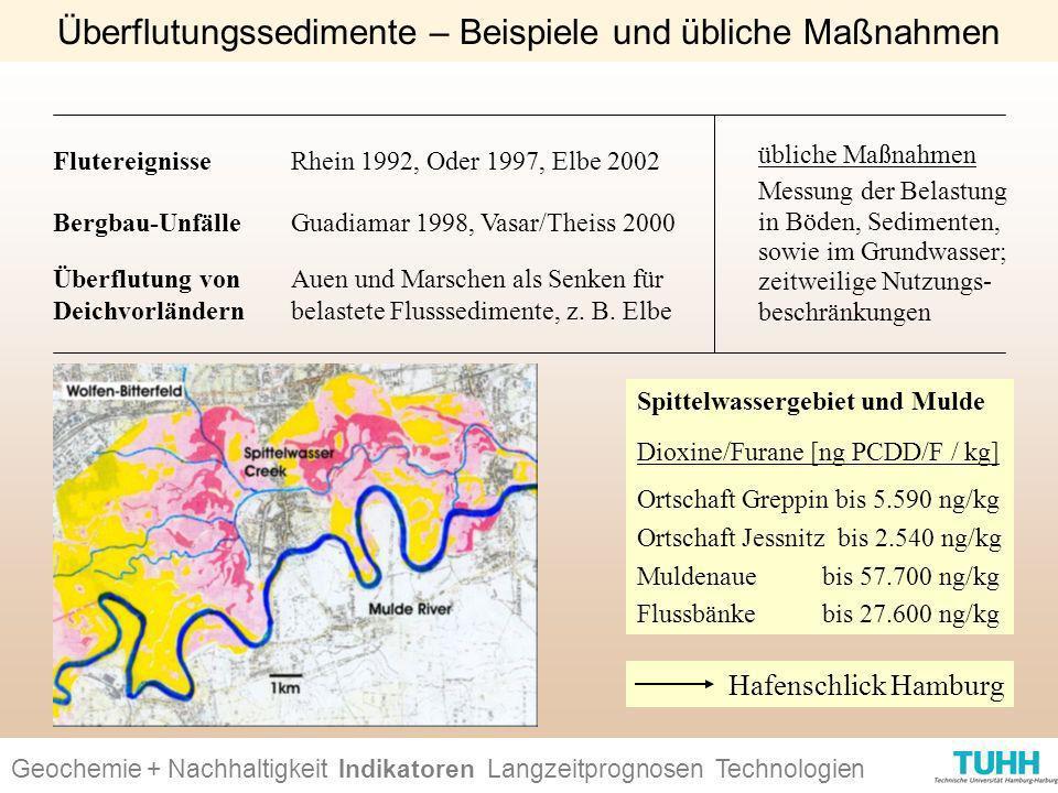 Überflutungssedimente – Beispiele und übliche Maßnahmen
