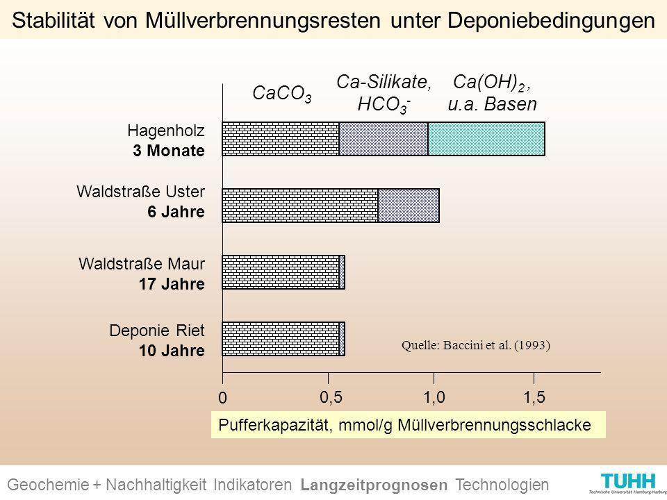 Stabilität von Müllverbrennungsresten unter Deponiebedingungen