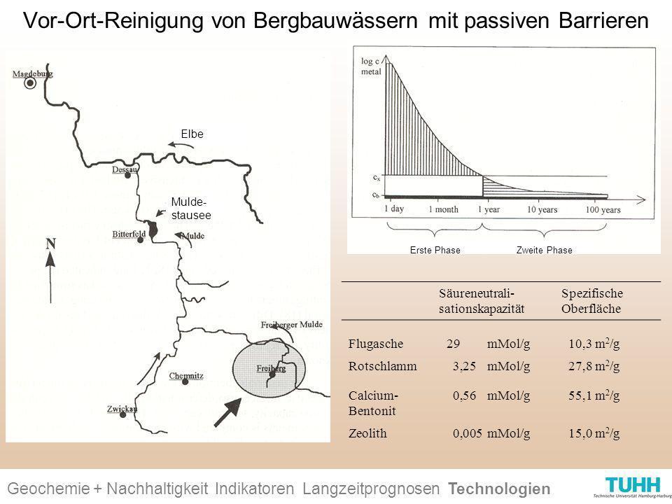 Vor-Ort-Reinigung von Bergbauwässern mit passiven Barrieren