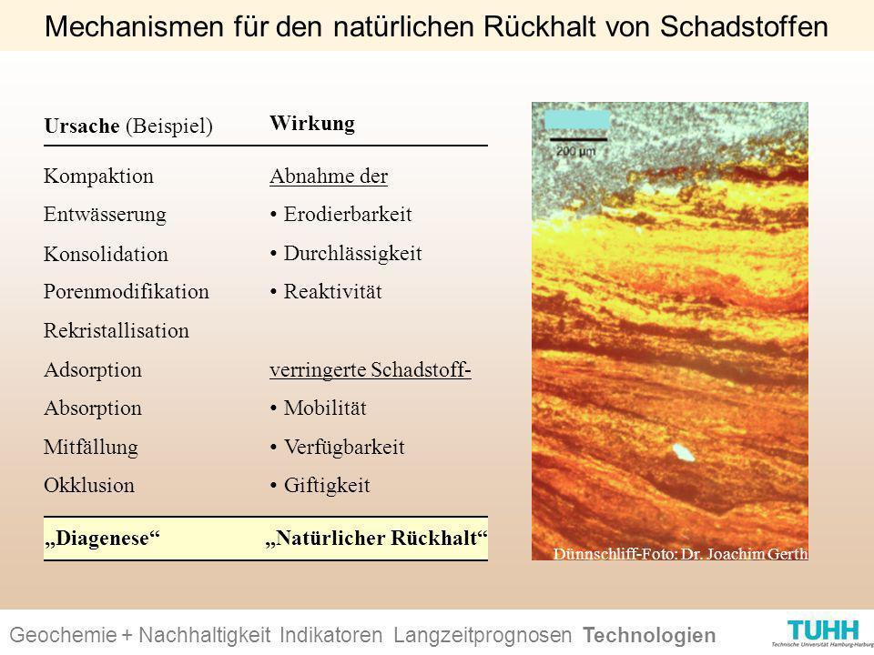 Mechanismen für den natürlichen Rückhalt von Schadstoffen