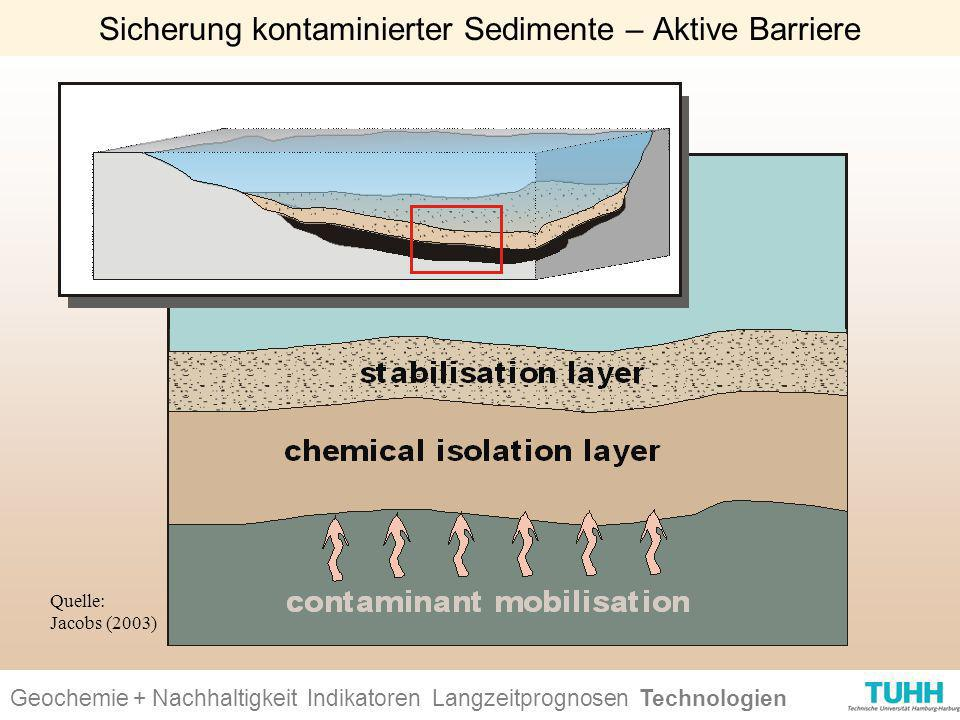 Sicherung kontaminierter Sedimente – Aktive Barriere