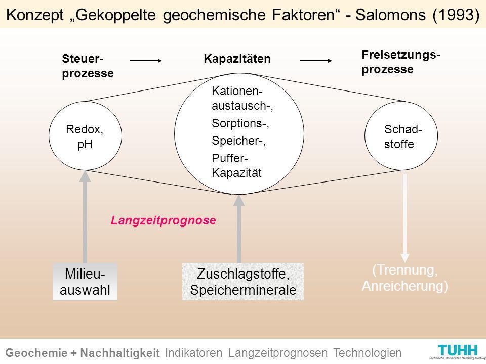 """Konzept """"Gekoppelte geochemische Faktoren - Salomons (1993)"""