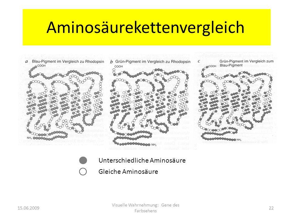 Aminosäurekettenvergleich