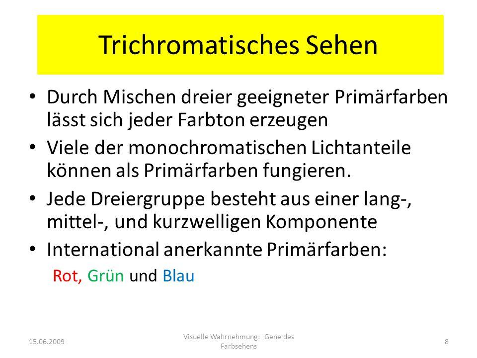 Trichromatisches Sehen