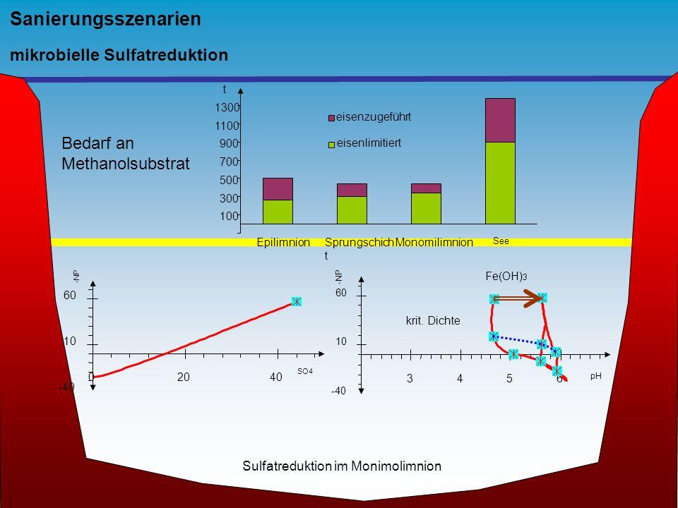 Sanierungsszenarien mikrobielle Sulfatreduktion